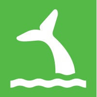 Icon of whale tale going underwater